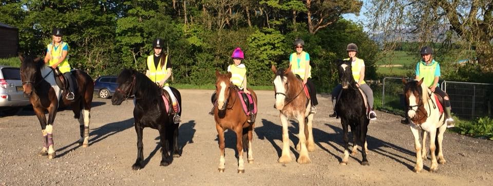 Hacking Parkers Equestrian Cumbria Horse Riding cropped